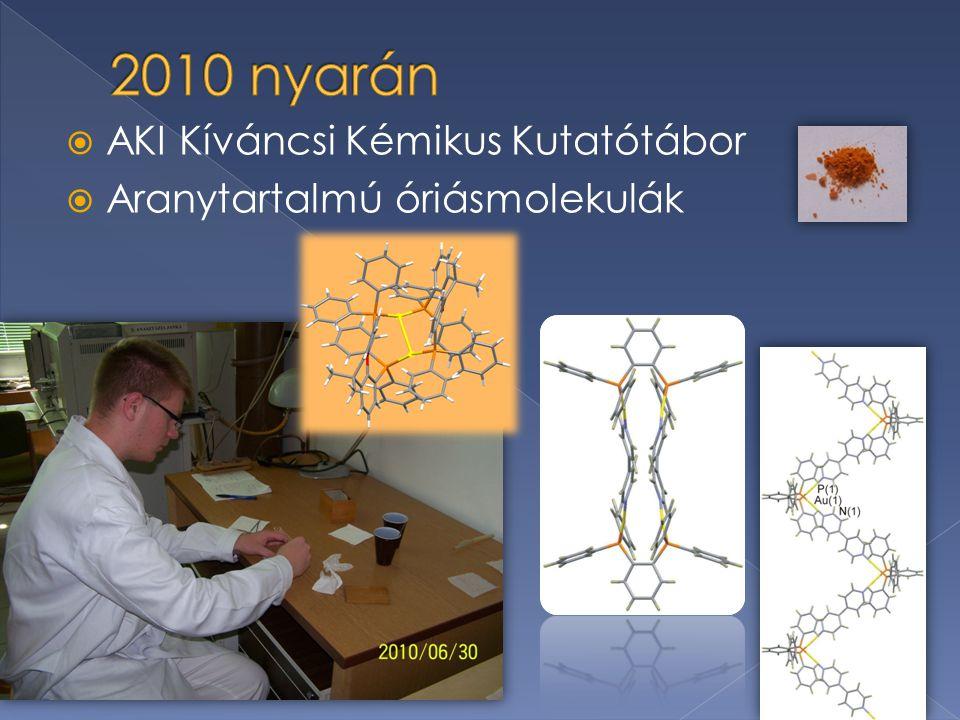  AKI Kíváncsi Kémikus Kutatótábor  Aranytartalmú óriásmolekulák