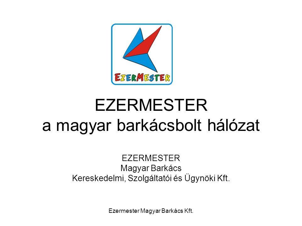 A multik szorításában A magyar barkácspiac bő felét a 4 + 1 multinacionális áruházlánc uralja A másik felén mintegy 10.000 kisebb bolt osztozik A multik folytatják a terjeszkedést A kis boltok fokozatosan elvesztik pozícióikat Ezermester Magyar Barkács Kft.