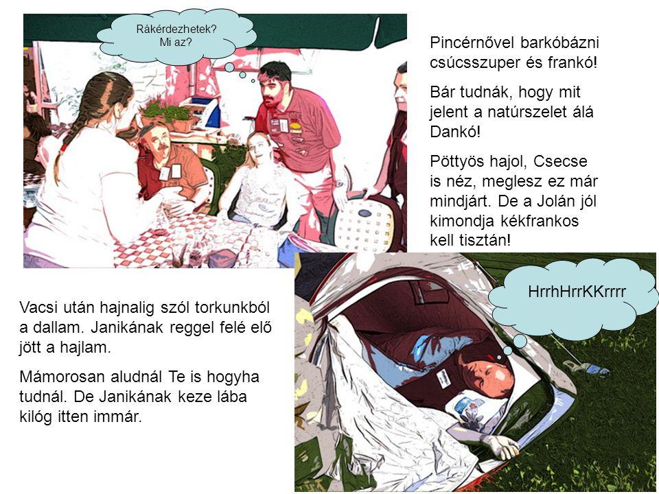 Büfé kocsi is bepakol, van benne pár ember. Pityu Teku, Ildi, Sévi még jó hogy van hely egyben.