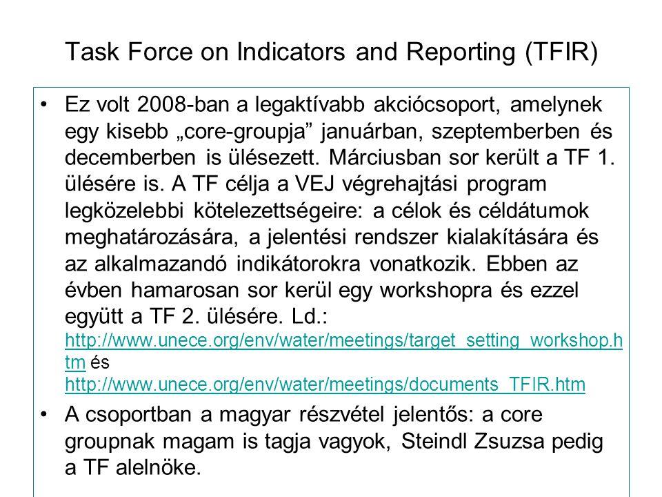 """Task Force on Indicators and Reporting (TFIR) Ez volt 2008-ban a legaktívabb akciócsoport, amelynek egy kisebb """"core-groupja januárban, szeptemberben és decemberben is ülésezett."""