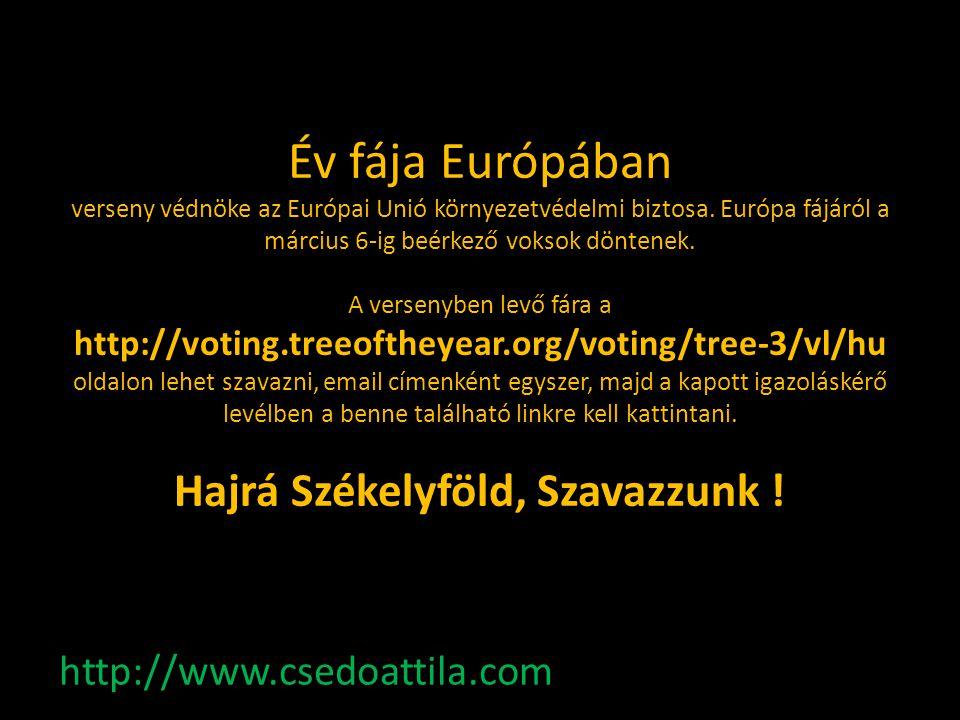 Év fája Európában verseny védnöke az Európai Unió környezetvédelmi biztosa. Európa fájáról a március 6-ig beérkező voksok döntenek. A versenyben levő