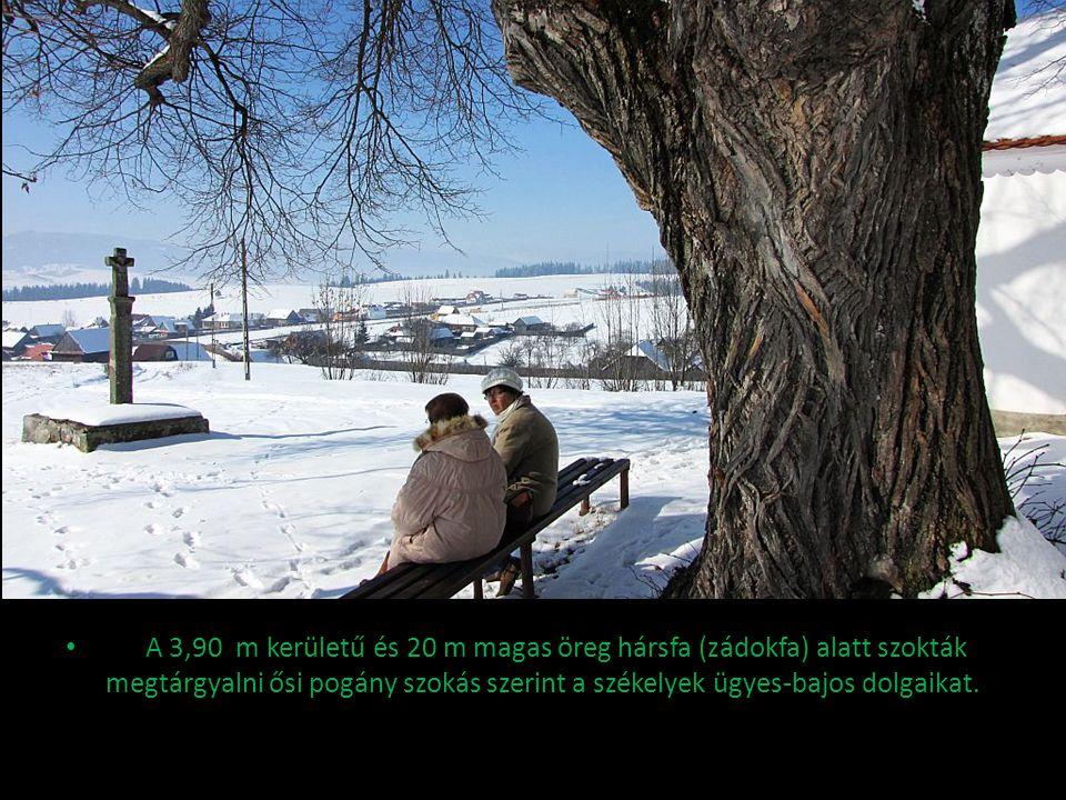 A 3,90. m kerületű és 20 m magas öreg hársfa (zádokfa) alatt szokták megtárgyalni ősi pogány szokás szerint a székelyek ügyes-bajos dolgaikat.