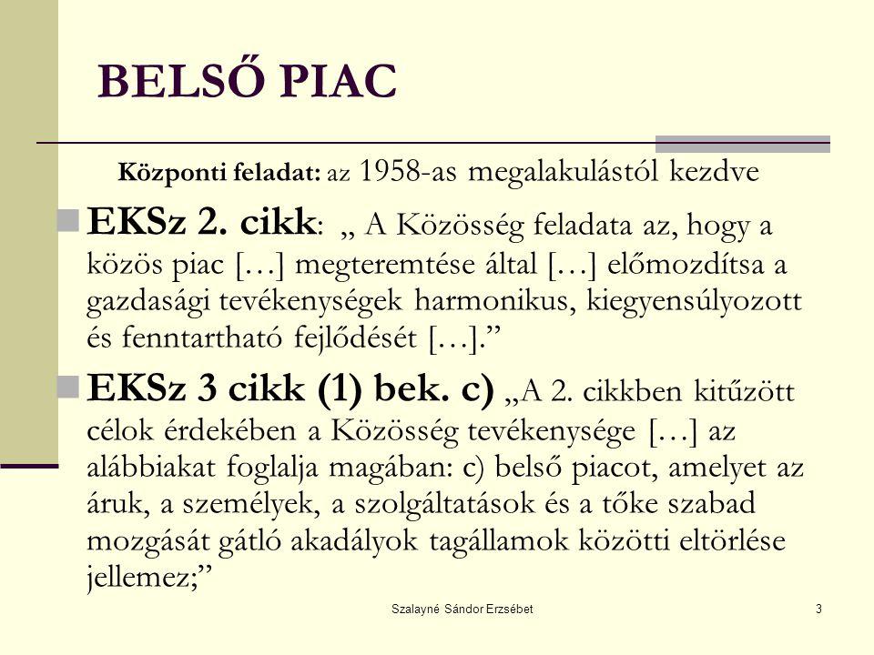 Szalayné Sándor Erzsébet14 HÉZAGOK A BELSŐ PIAC ELEMEIBEN A társasági jogban ( pl.