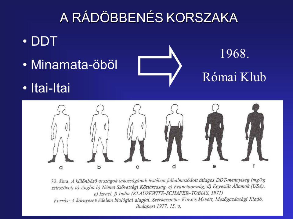 DDT Minamata-öböl Itai-Itai 1968. Római Klub