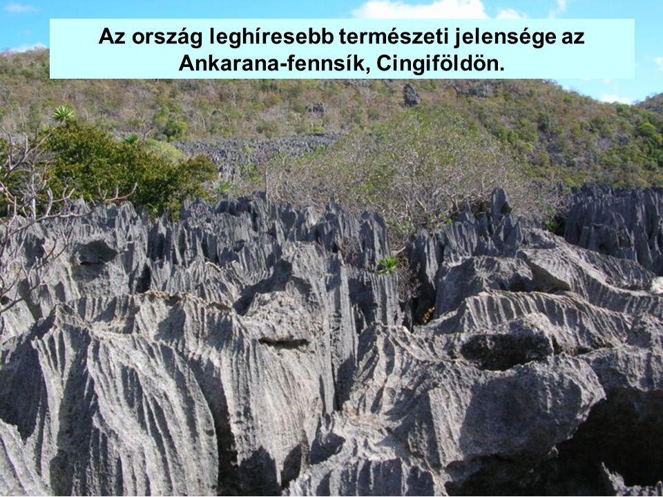 Az ország leghíresebb természeti jelensége az Ankarana-fennsík, Cingiföldön.