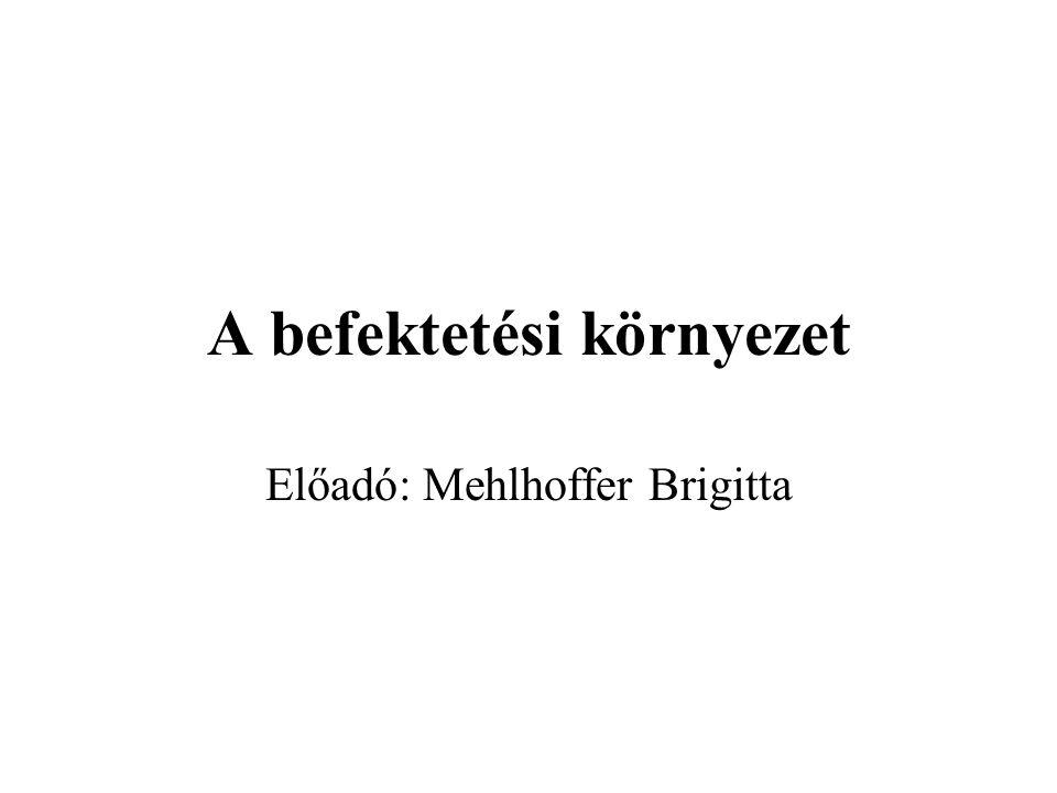 A befektetési környezet Előadó: Mehlhoffer Brigitta