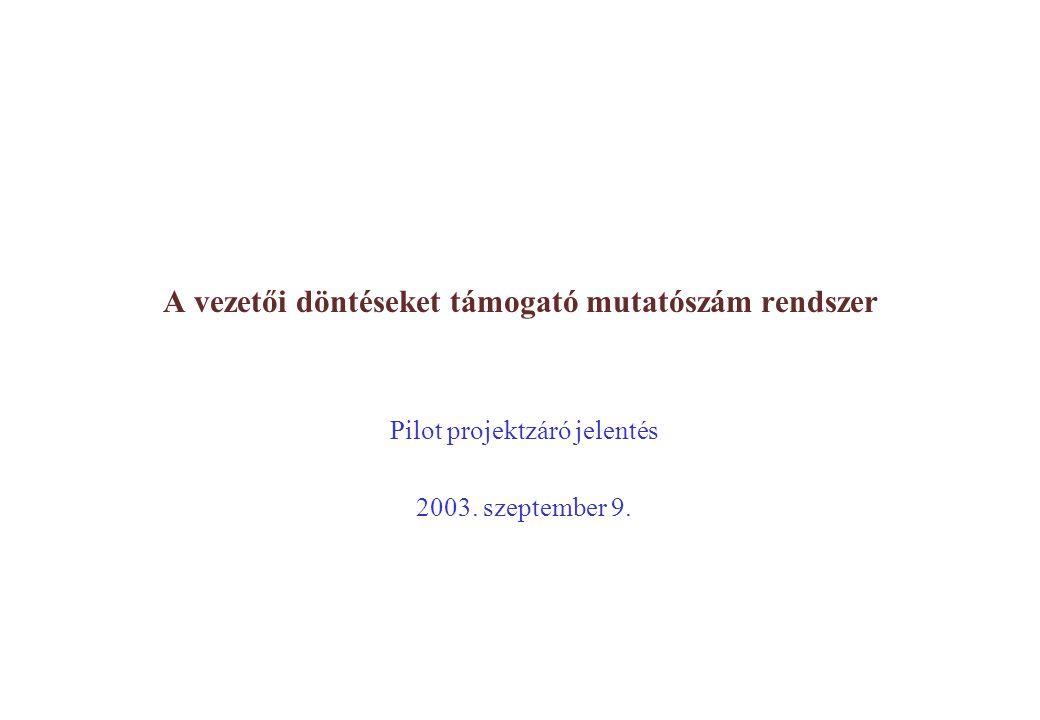 1. oldal A vezetői döntéseket támogató mutatószám rendszer Pilot projektzáró jelentés 2003.