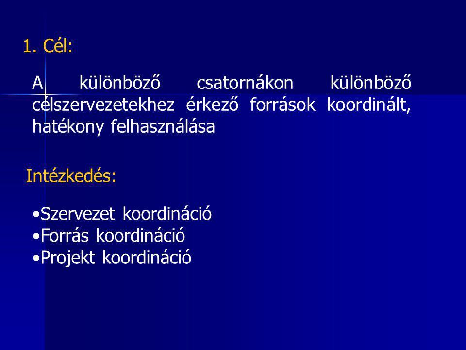 A különböző csatornákon különböző célszervezetekhez érkező források koordinált, hatékony felhasználása Szervezet koordináció Forrás koordináció Projekt koordináció Intézkedés: 1.