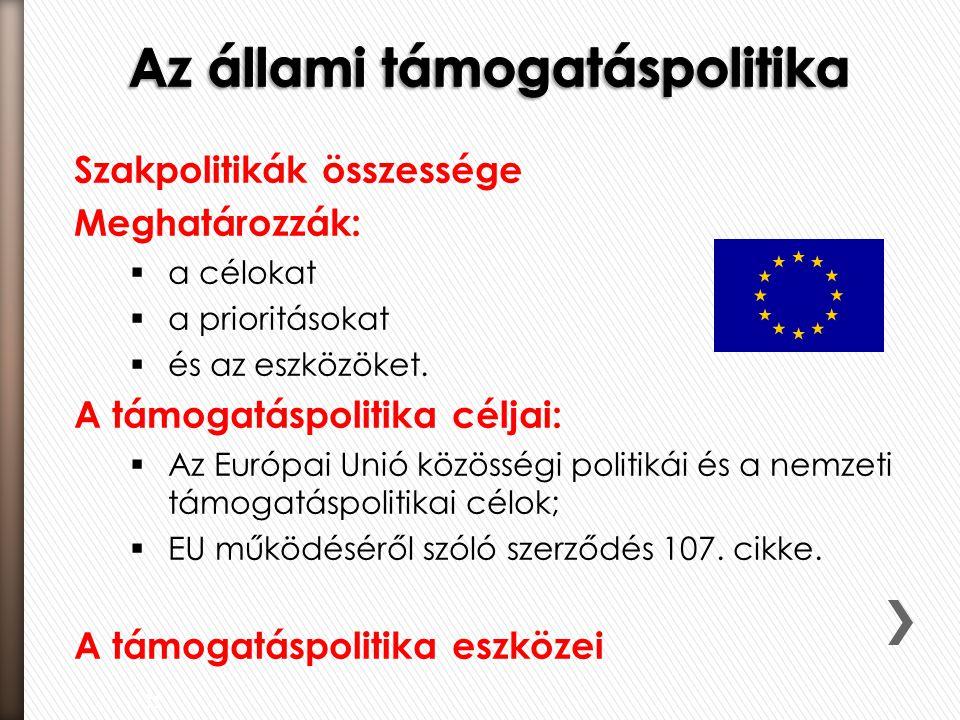 Átfogó gazdasági stratégia szükségessége  EU belső piaccal összeegyeztethető állami és EU forrásból finanszírozott támogatások  Gazdaságpolitikai célokat szolgáló támogatási rendszerek:  agrártámogatások;  területfejlesztési támogatások.