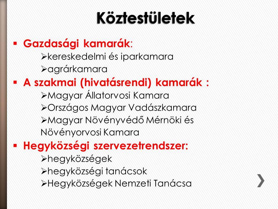  Gazdasági kamarák :  kereskedelmi és iparkamara  agrárkamara  A szakmai (hivatásrendi) kamarák :  Magyar Állatorvosi Kamara  Országos Magyar Va