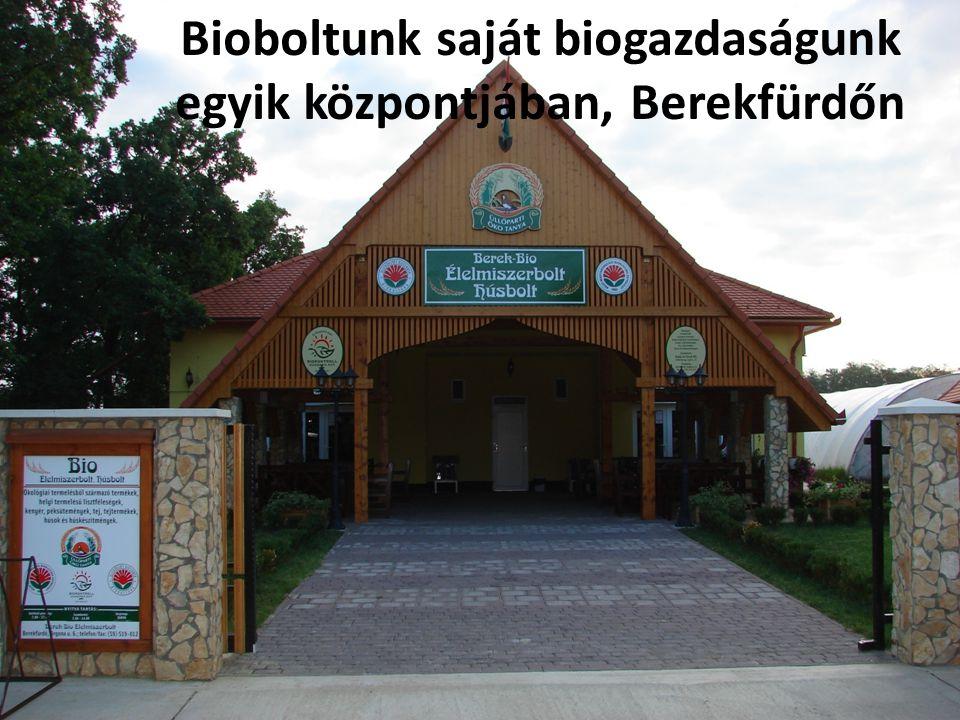Bioboltunk saját biogazdaságunk egyik központjában, Berekfürdőn