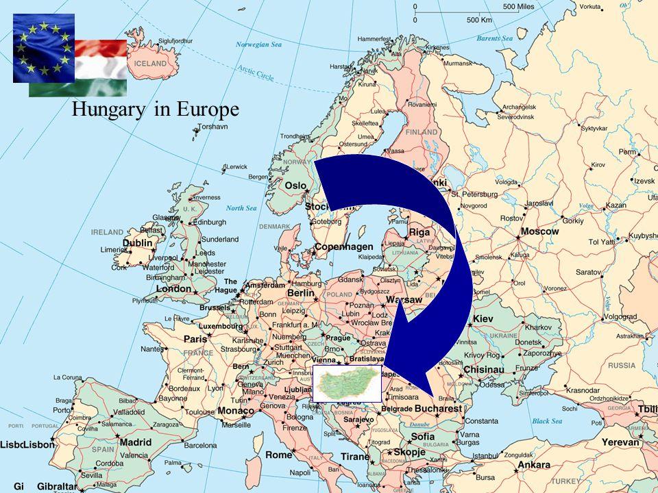 Tejfeldolgozók száma Magyarországon Tejfeldolgozók száma Magyarországon Koncentráció a feldolgozók körében