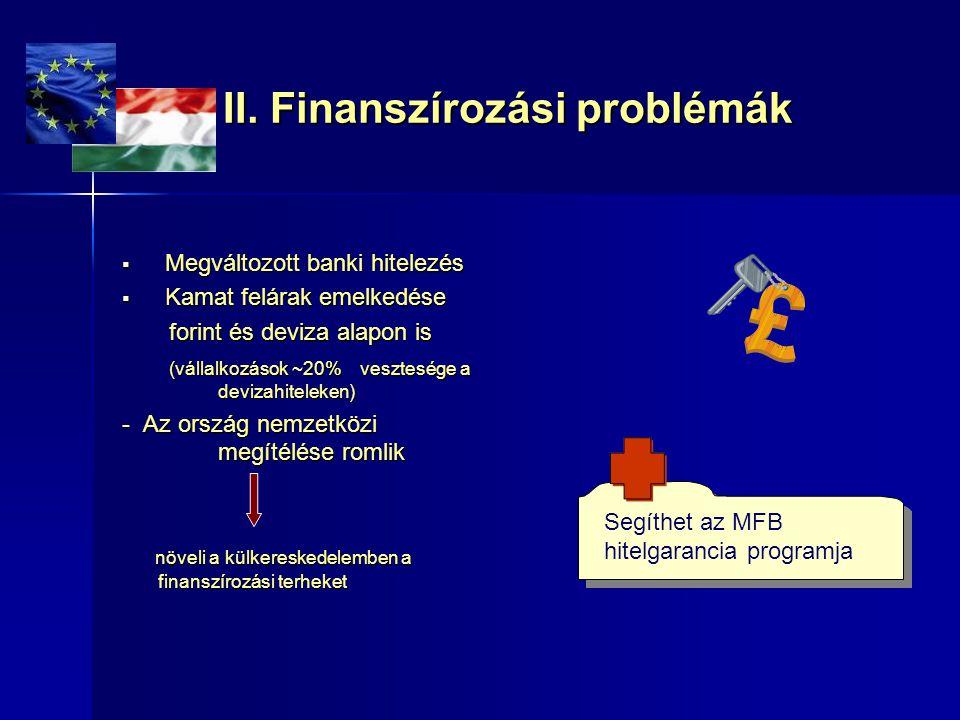 II. Finanszírozási problémák  Megváltozott banki hitelezés  Kamat felárak emelkedése forint és deviza alapon is forint és deviza alapon is (vállalko