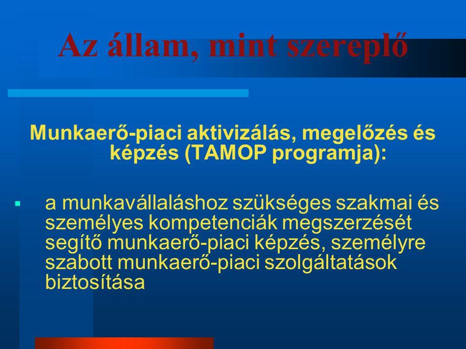 Az állam, mint szereplő Munkaerő-piaci aktivizálás, megelőzés és képzés (TAMOP programja):  a munkavállaláshoz szükséges szakmai és személyes kompete