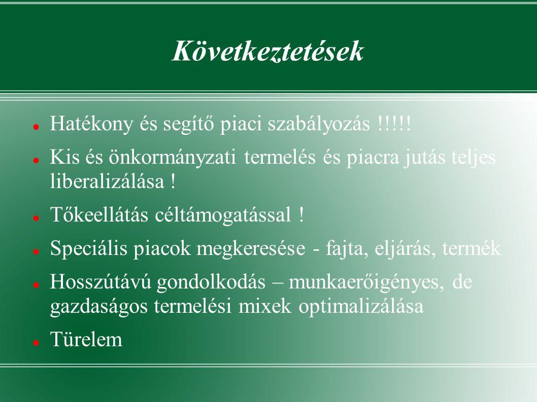 Következtetések Hatékony és segítő piaci szabályozás !!!!.