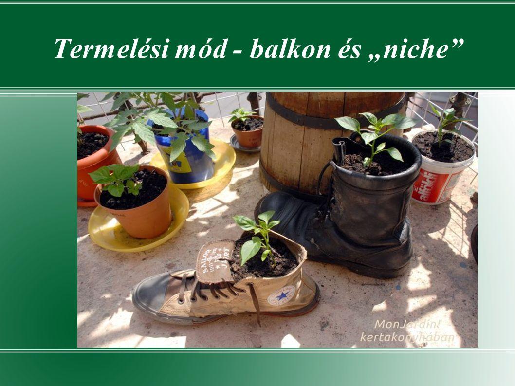 """Termelési mód - balkon és """"niche"""
