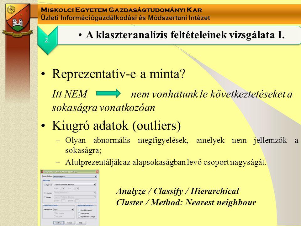 Miskolci Egyetem Gazdaságtudományi Kar Üzleti Információgazdálkodási és Módszertani Intézet Reprezentatív-e a minta.