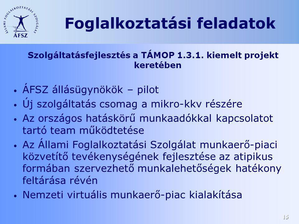 15 Szolgáltatásfejlesztés a TÁMOP 1.3.1. kiemelt projekt keretében ÁFSZ állásügynökök – pilot Új szolgáltatás csomag a mikro-kkv részére Az országos h