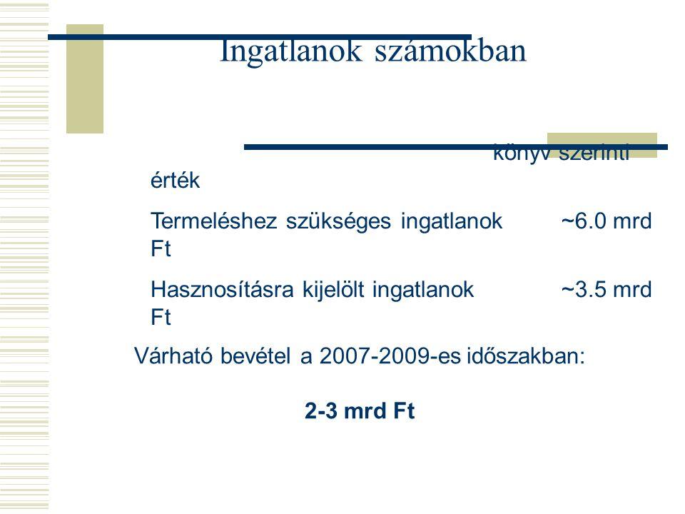 Ingatlanok számokban könyv szerinti érték Termeléshez szükséges ingatlanok~6.0 mrd Ft Hasznosításra kijelölt ingatlanok~3.5 mrd Ft Várható bevétel a 2