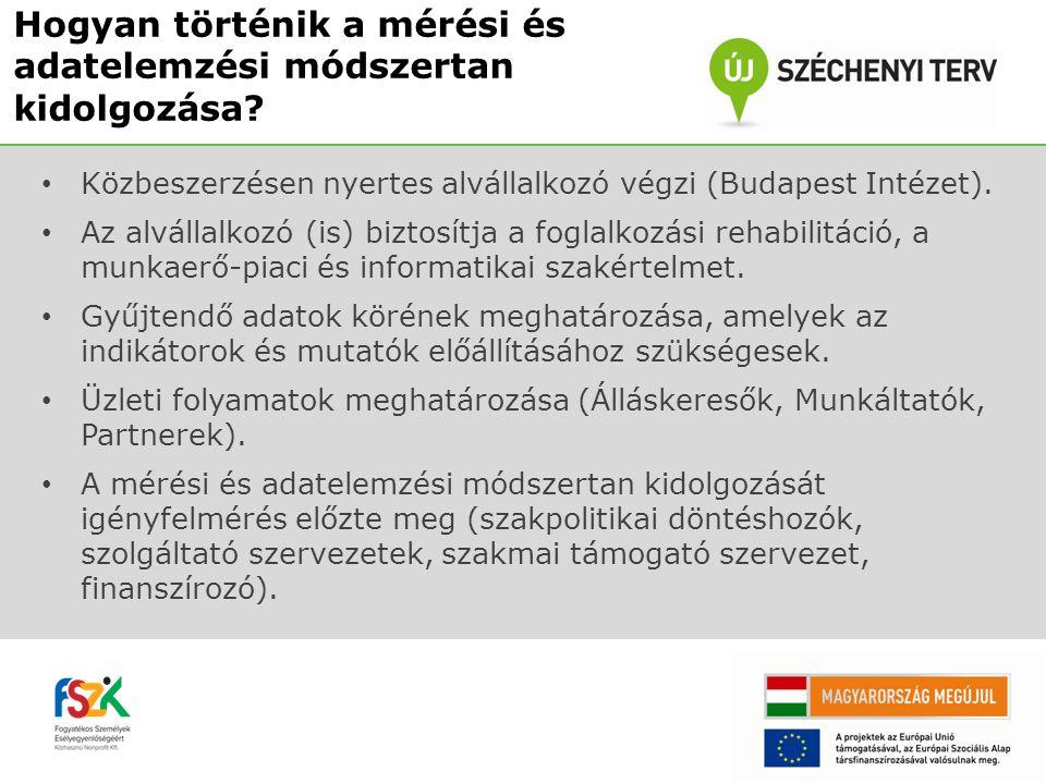 Közbeszerzésen nyertes alvállalkozó végzi (Budapest Intézet).