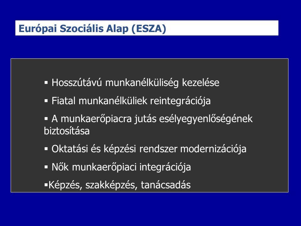 Európai Szociális Alap (ESZA)  Hosszútávú munkanélküliség kezelése  Fiatal munkanélküliek reintegrációja  A munkaerőpiacra jutás esélyegyenlőségének biztosítása  Oktatási és képzési rendszer modernizációja  Nők munkaerőpiaci integrációja  Képzés, szakképzés, tanácsadás