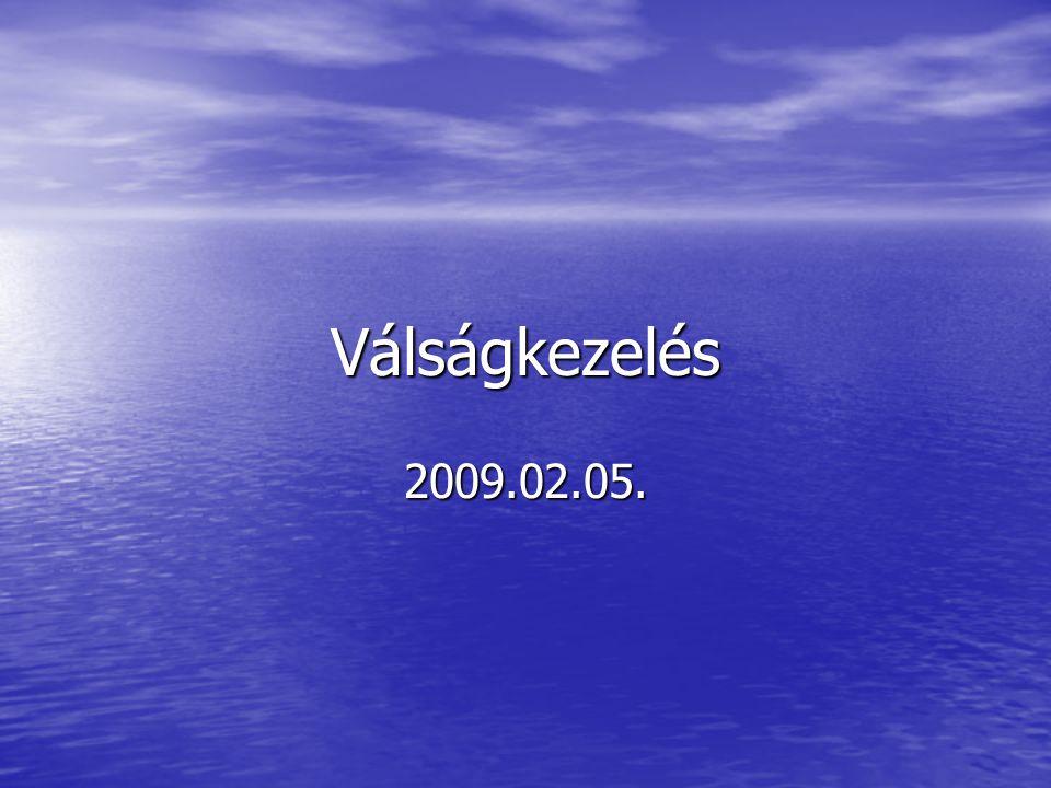 Válságkezelés 2009.02.05.