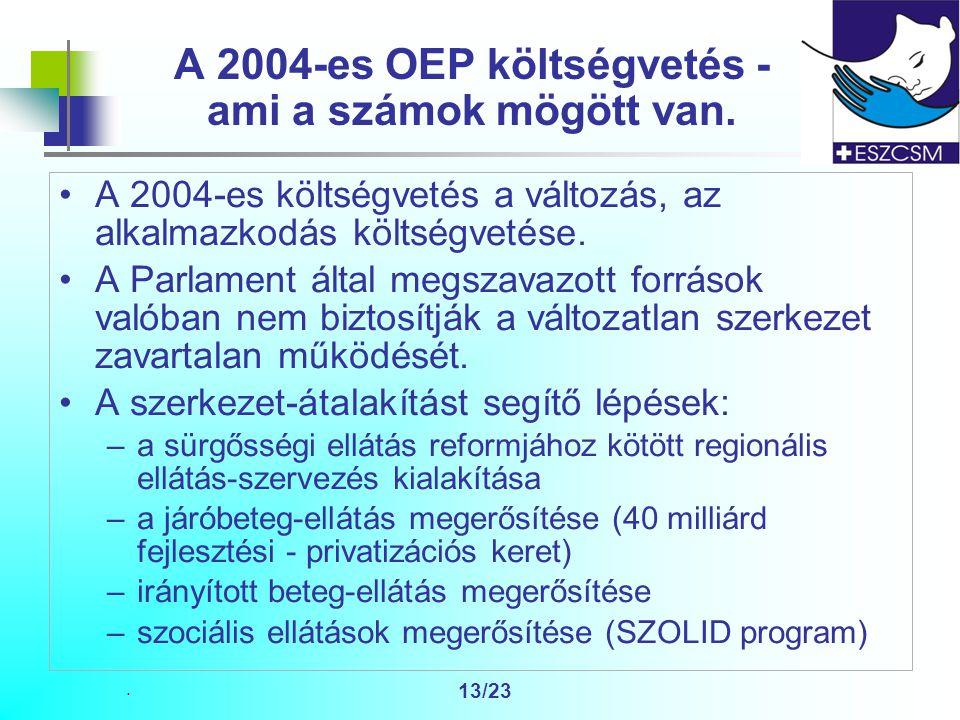 13/23 A 2004-es OEP költségvetés - ami a számok mögött van.