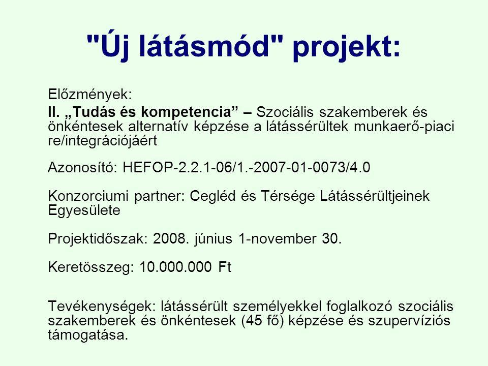 Új látásmód projekt: Előzmények: II.