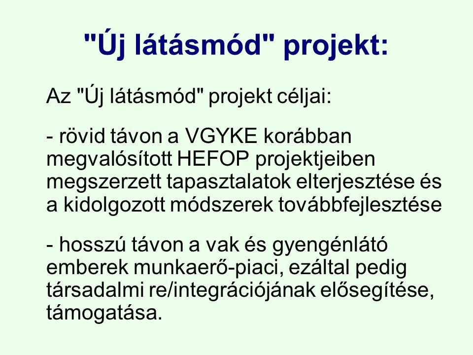 Új látásmód projekt: Az Új látásmód projekt céljai: - rövid távon a VGYKE korábban megvalósított HEFOP projektjeiben megszerzett tapasztalatok elterjesztése és a kidolgozott módszerek továbbfejlesztése - hosszú távon a vak és gyengénlátó emberek munkaerő-piaci, ezáltal pedig társadalmi re/integrációjának elősegítése, támogatása.