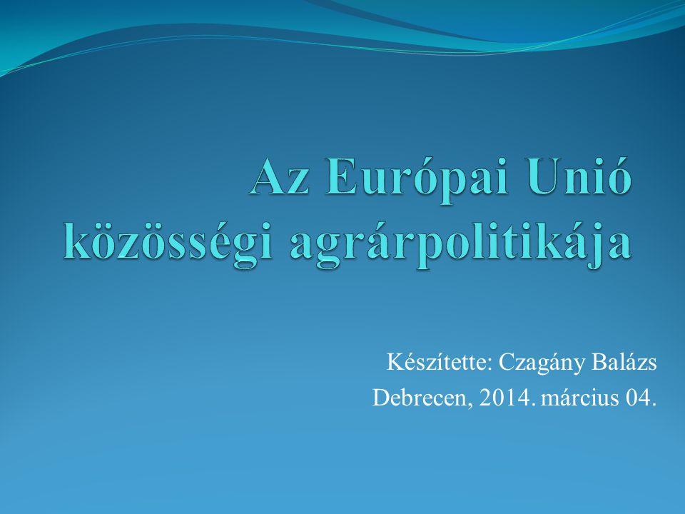 Készítette: Czagány Balázs Debrecen, 2014. március 04.
