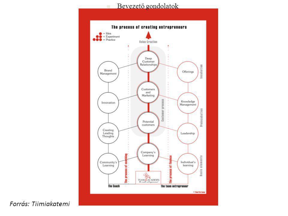 Fizikai erőforrások Társadalmi erőforrások Pénzügyi erőforrások Természeti erőforrások Kormányzat Tudás- központok Kulturális értékek Beruházók Piac Munkaerő Gazdasági tevékenység Munkaerő piac Emberi erőforrások Forrás: SABAU–PAQUIET (2009:21) Erőforrások