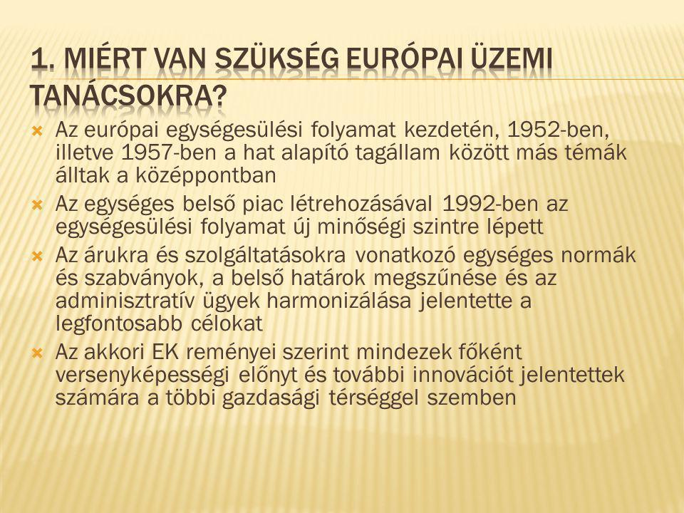  Az európai egységesülési folyamat kezdetén, 1952-ben, illetve 1957-ben a hat alapító tagállam között más témák álltak a középpontban  Az egységes belső piac létrehozásával 1992-ben az egységesülési folyamat új minőségi szintre lépett  Az árukra és szolgáltatásokra vonatkozó egységes normák és szabványok, a belső határok megszűnése és az adminisztratív ügyek harmonizálása jelentette a legfontosabb célokat  Az akkori EK reményei szerint mindezek főként versenyképességi előnyt és további innovációt jelentettek számára a többi gazdasági térséggel szemben