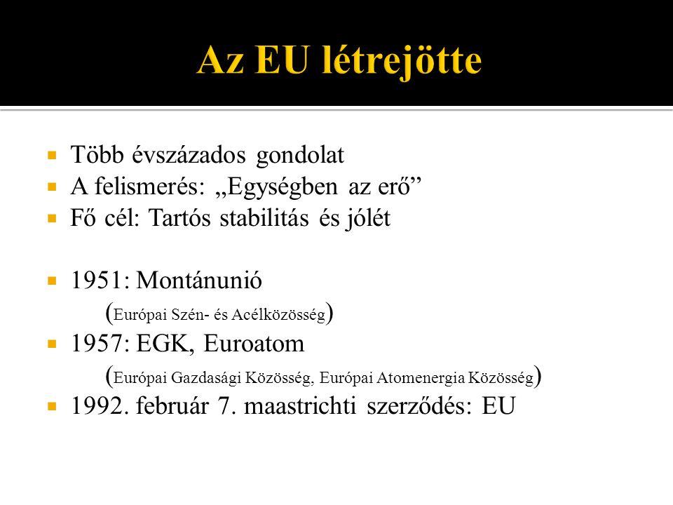  Preferenciális övezet  Szabadkereskedelmi övezet  Vámunió  Közös piac  Egységes piac  Gazdasági unió  Politikai unió