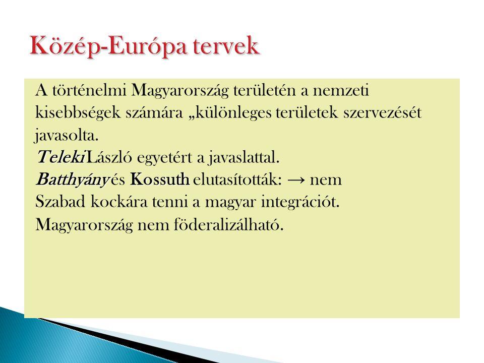 """A történelmi Magyarország területén a nemzeti kisebbségek számára """"különleges területek szervezését javasolta. Teleki Teleki László egyetért a javasla"""