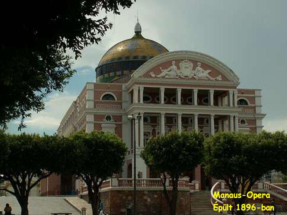 AMAZONAS Fõvárosa Manaus, 1,7 millió lakósa van.Rengeteg külföldi cégnek van gyára ott,mivel adó kedvezménybe részesülnek.Többször voltam én is ott és