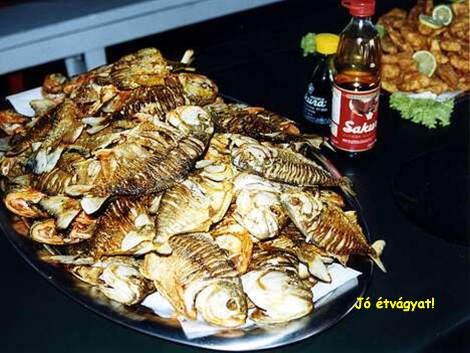 Camarão piac