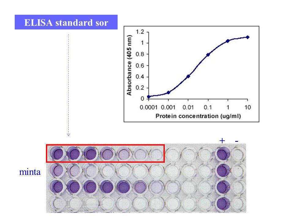 10 ELISA standard sor + - minta