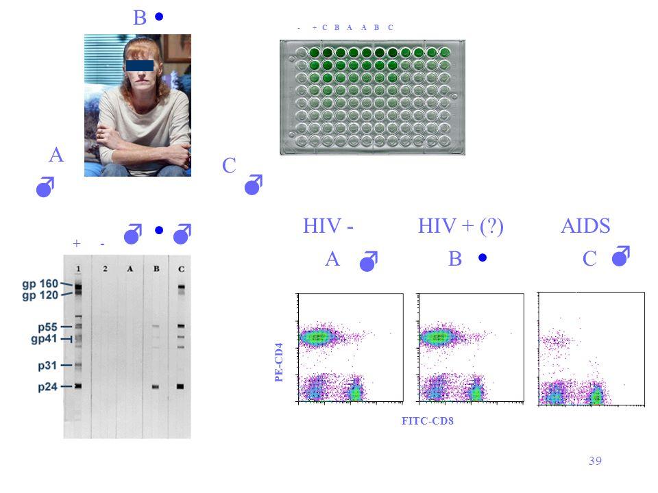 39 A B C  - + C B A A B C  CAB   FITC-CD8 PE-CD4   +- AIDSHIV + (?)HIV -