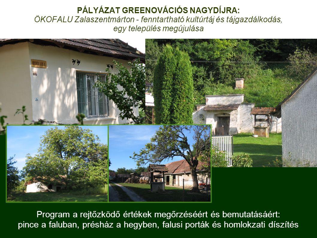 Program a rejtőzködő értékek megőrzéséért és bemutatásáért: pince a faluban, présház a hegyben, falusi porták és homlokzati díszítés PÁLYÁZAT GREENOVÁCIÓS NAGYDÍJRA: ÖKOFALU Zalaszentmárton - fenntartható kultúrtáj és tájgazdálkodás, egy település megújulása