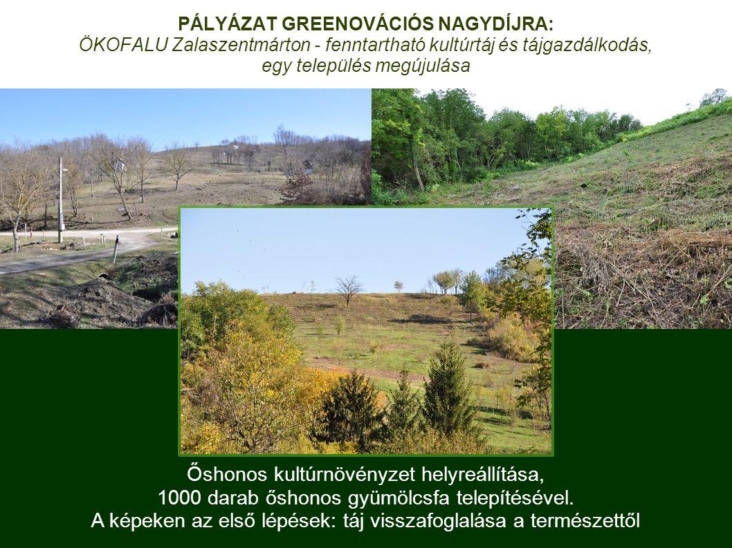 Őshonos kultúrnövényzet helyreállítása, 1000 darab őshonos gyümölcsfa telepítésével.