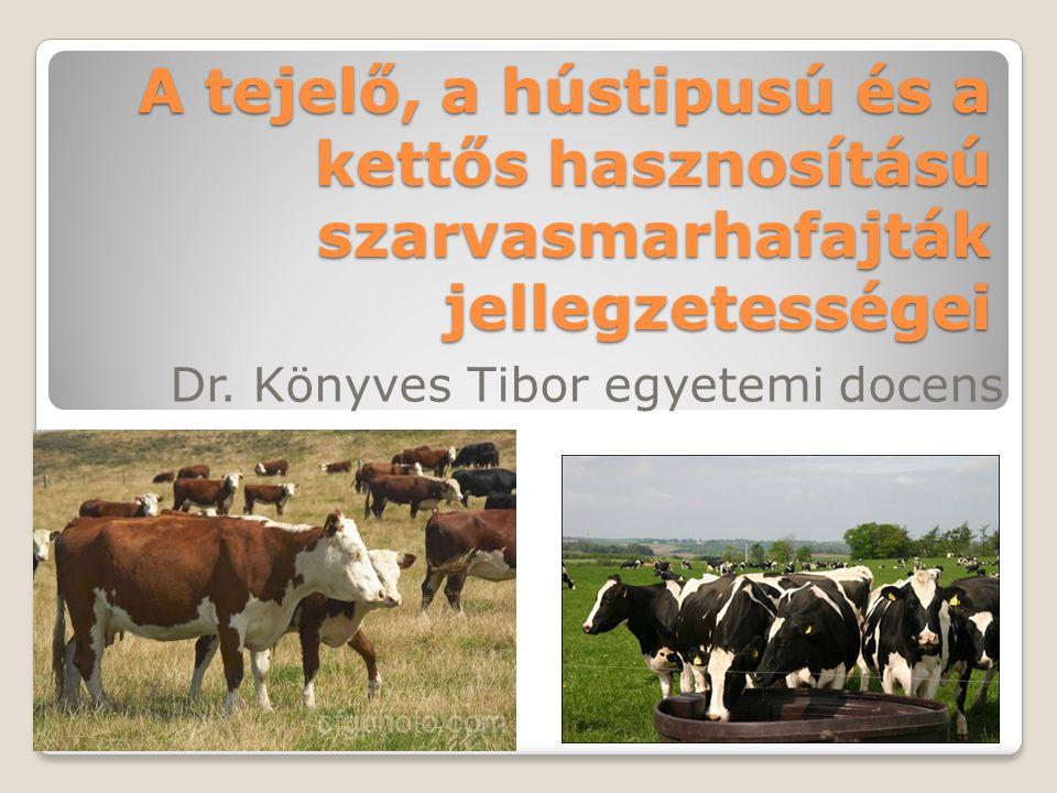A tejelő, a hústipusú és a kettős hasznosítású szarvasmarhafajták jellegzetességei Dr. Könyves Tibor egyetemi docens