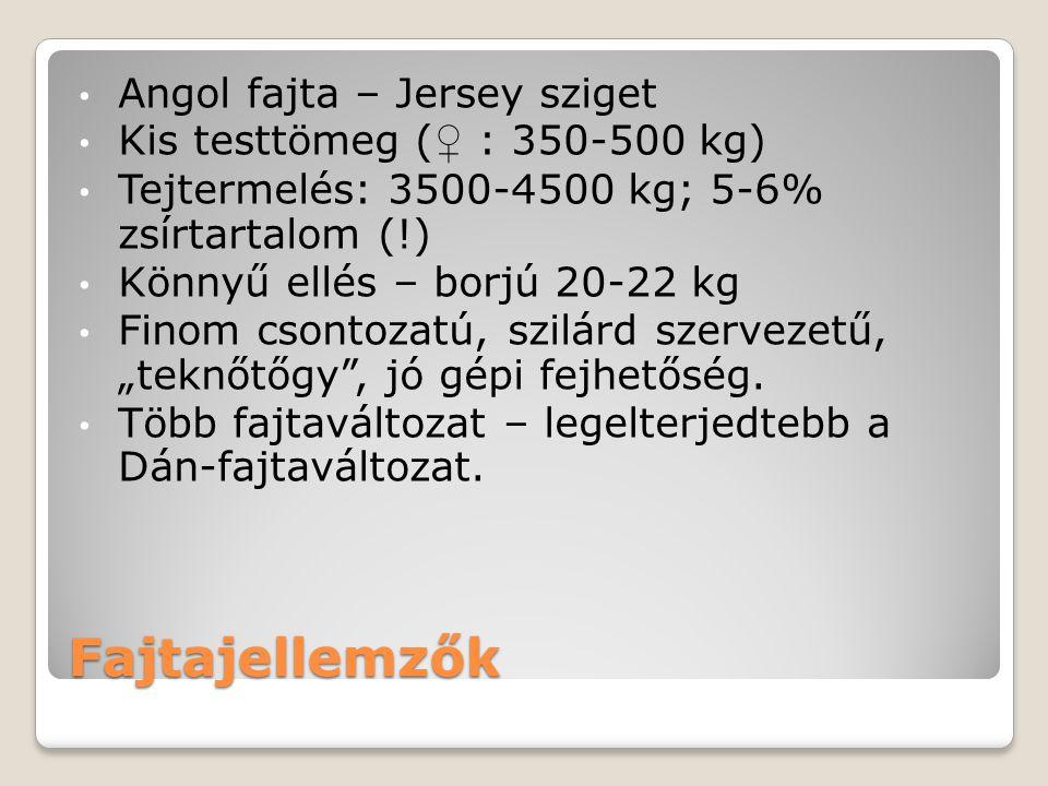 Fajtajellemzők Angol fajta – Jersey sziget Kis testtömeg ( ♀ : 350-500 kg) Tejtermelés: 3500-4500 kg; 5-6% zsírtartalom (!) Könnyű ellés – borjú 20-22