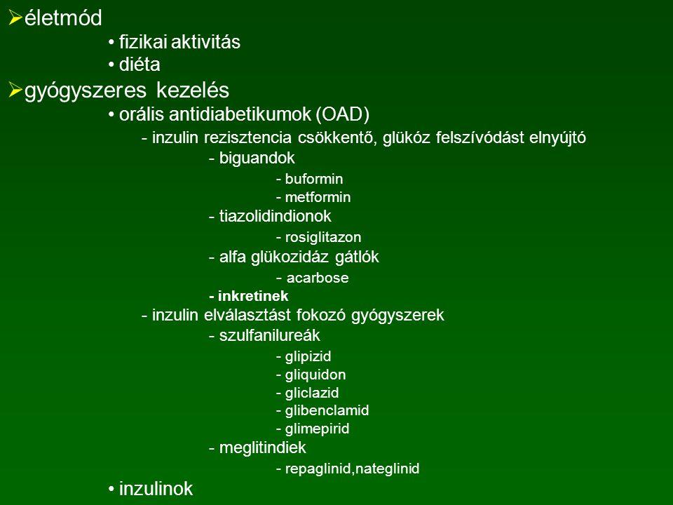 2-es típusú diabetes mellitus kezelése