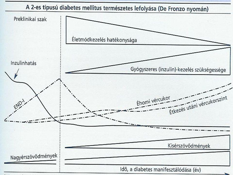 Inzulinkezelés  inzulinadagolás: subcutan injekció formában helyi hiperinzulinémiát okoz élettani viszonyokkal fordított - endogén: hasnyálmirigy  m