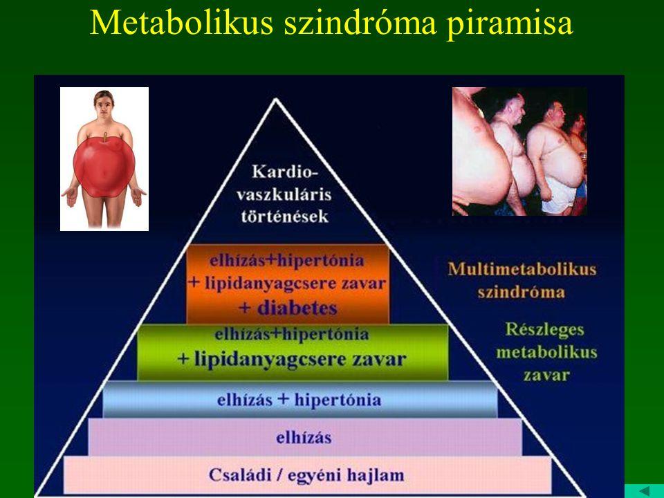 A metabolikus szindróma ATP-III diagnosztikus kritériumrendszere Centrális elhízás Derékkörfogat: férfiaknál: >102 cm nőknél: >88 cm Emelkedett trigli