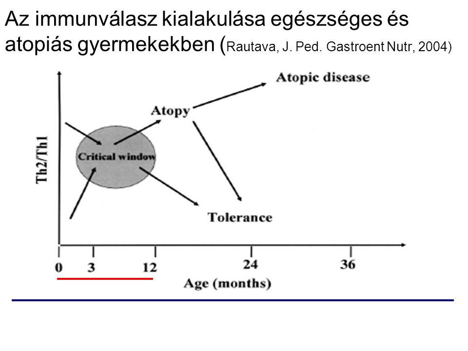 Az immunválasz kialakulása egészséges és atopiás gyermekekben ( Rautava, J. Ped. Gastroent Nutr, 2004)