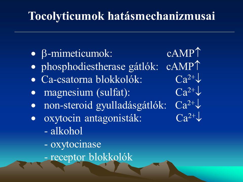 Tocolyticumok hatásmechanizmusai   -mimeticumok: cAMP   phosphodiestherase gátlók: cAMP   Ca-csatorna blokkolók: Ca 2+   magnesium (sulfat): C