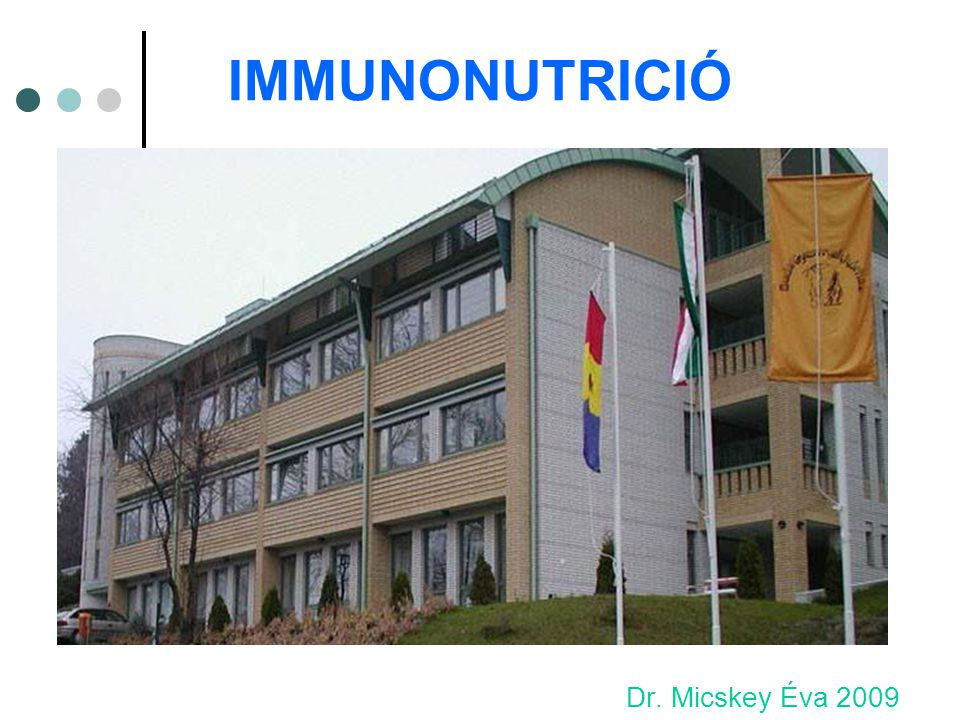 IMMUNONUTRICIÓ Dr. Micskey Éva 2009