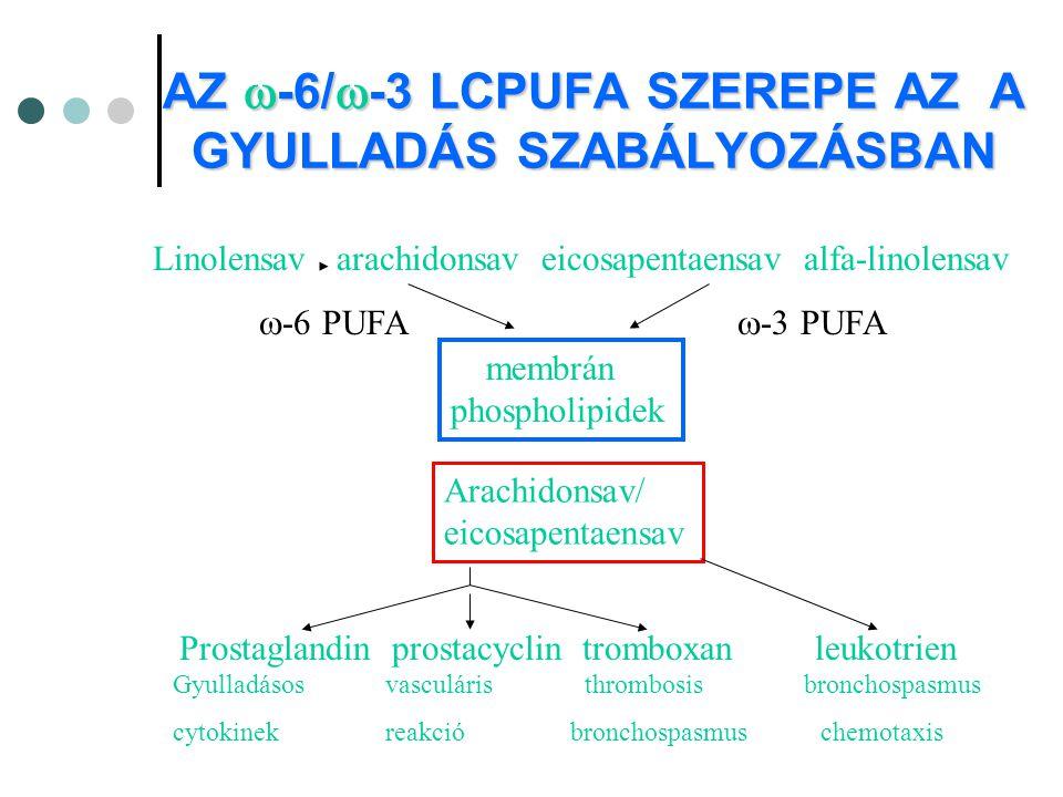 AZ  -6/  -3 LCPUFA SZEREPE AZ A GYULLADÁS SZABÁLYOZÁSBAN Linolensav arachidonsav eicosapentaensav alfa-linolensav  -6 PUFA  -3 PUFA membrán phosph