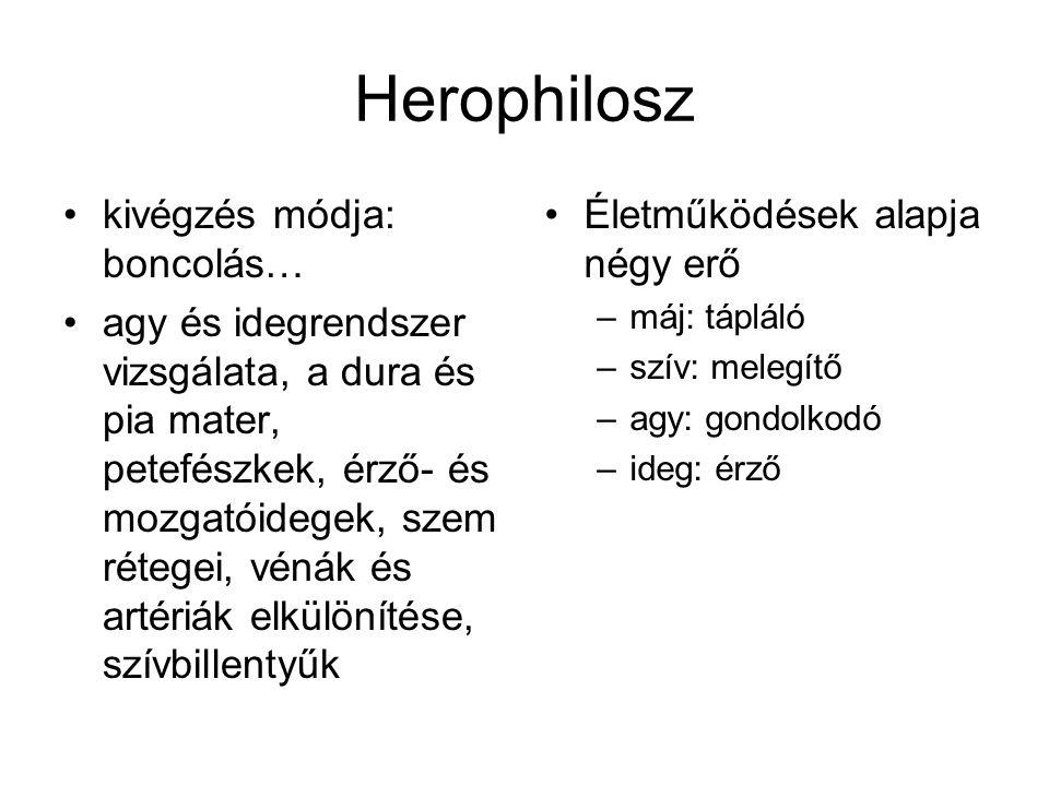 Herophilosz kivégzés módja: boncolás… agy és idegrendszer vizsgálata, a dura és pia mater, petefészkek, érző- és mozgatóidegek, szem rétegei, vénák és